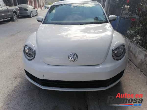 carro beetle