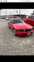 Mustang cobra 2009