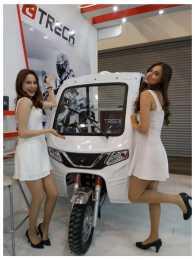 MOTOCARRO TRIMOTO DE CARGA 250cc